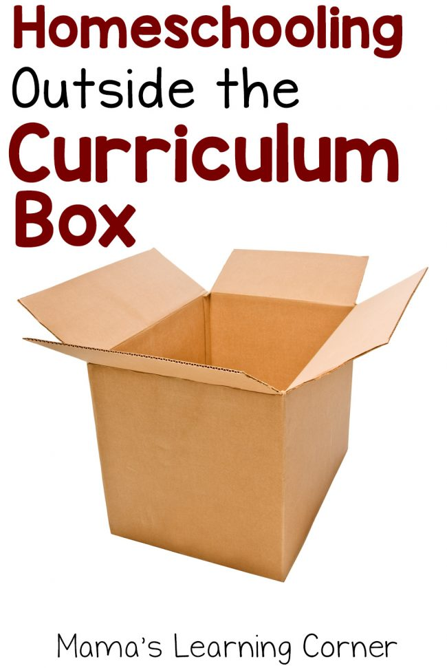 Homeschooling Outside the Curriculum Box