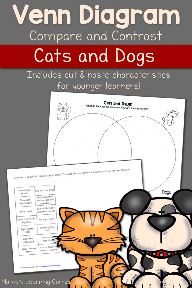 Cats and Dogs Venn Diagram Worksheet
