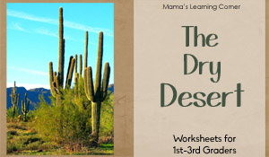 Desert Worksheets for 1st-3rd Graders