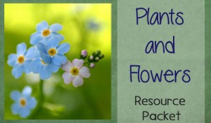 Plants and Flowers Themed Worksheet Packet