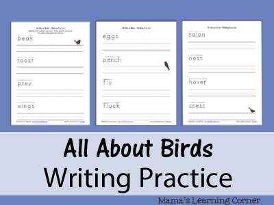 All About Birds Writing Practice