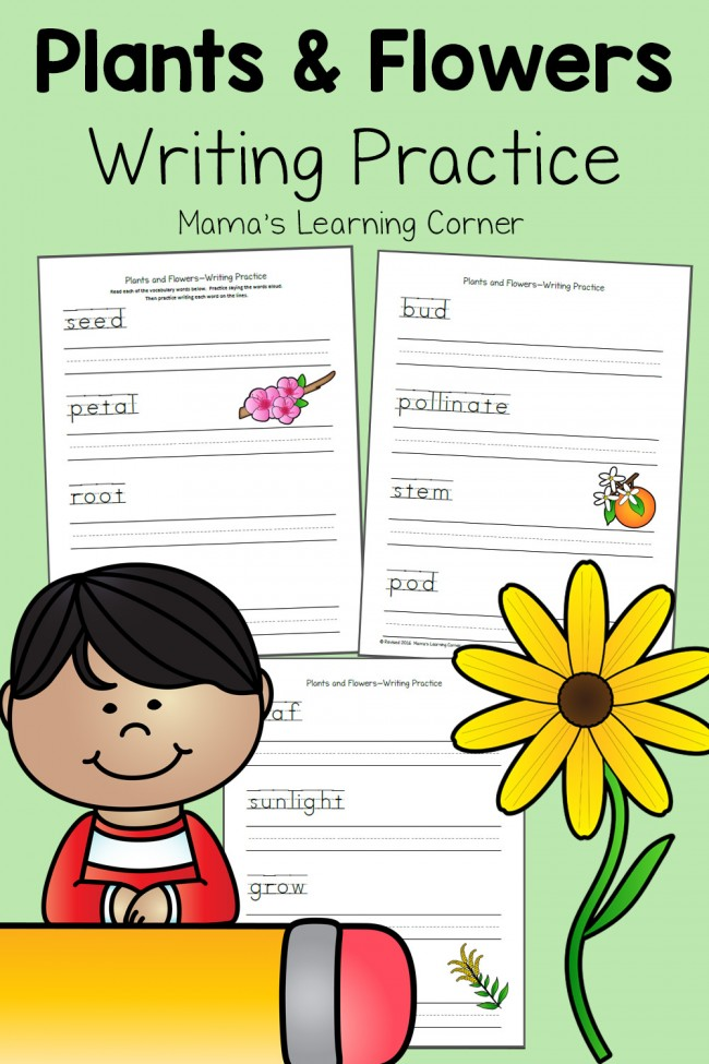 Plants and Flowers Writing Practice Pages