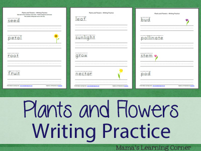 Plants and Flowers Vocabulary Writing Practice for Preschool-1st Grade