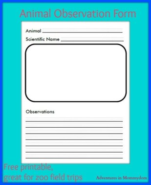 Zoo Animal Observation Form