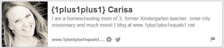 Carisa from 1+1+1=1 on Pinterest