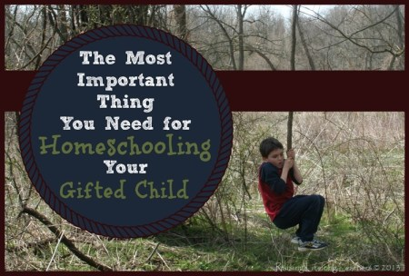 The Most Important Thing You Need for Homeschooling Your Gifted Child