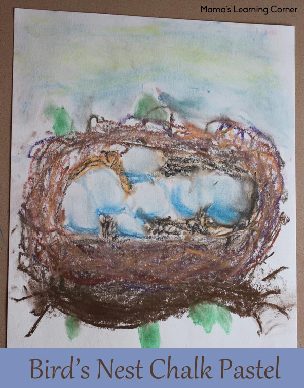 Birds Nest Chalk Pastel