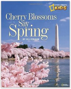 Cherry Blossoms Say Spring