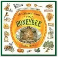 The Life and Times of the Honey Bee