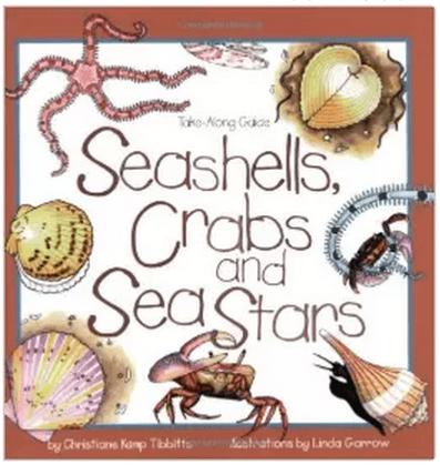Seashells, Crabs, and Sea Stars