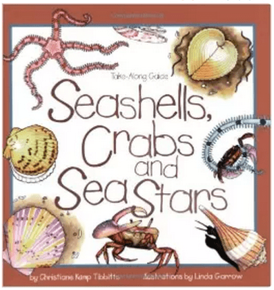 Seashells, Crabs, and Sea Stars