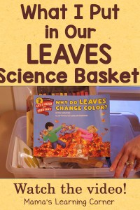 What We Put in Our Leaves Science Basket (plus a video!)