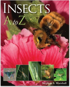 Insects A to Z
