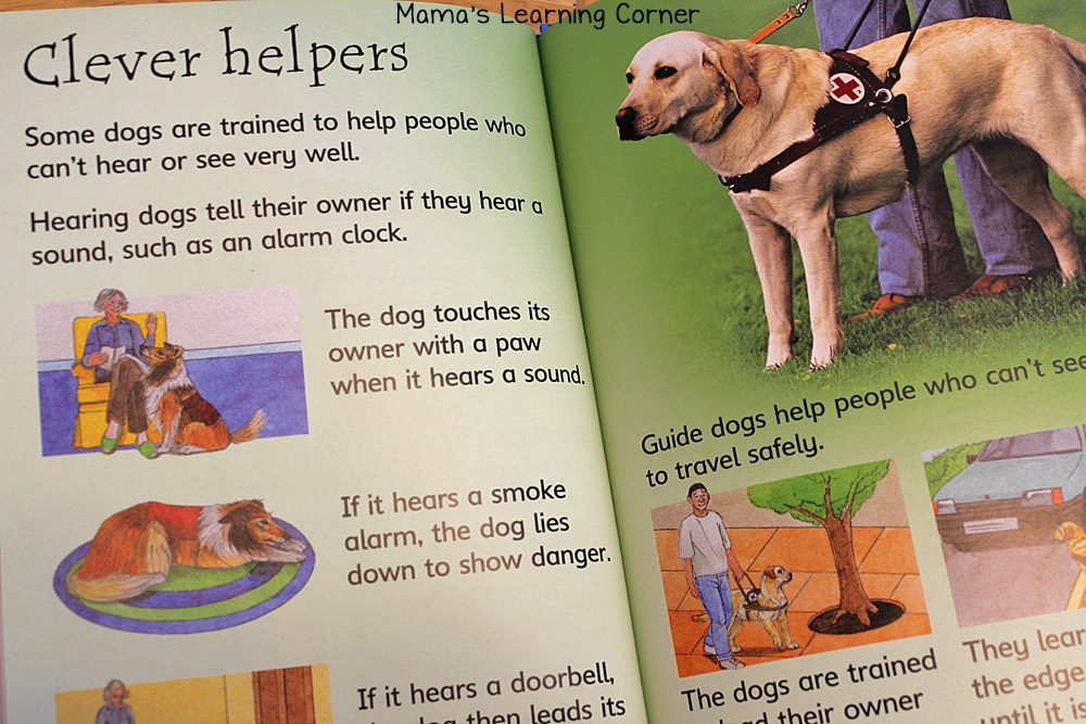 Dogs Book for Children