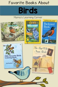 Favorite Books to Learn About Birds