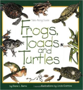 Frogs, Toads, and Turtles