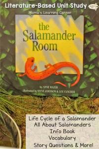 The Salamander Room – Life Cycle of a Salamander, Vocabulary, and more!
