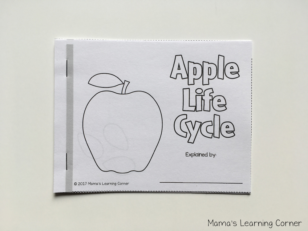 Apple Life Cycle Mini Booklet