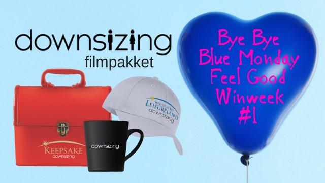 Bye ByeBlue Monday-1 Downsizing