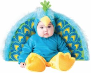 Baby kostuum pauw