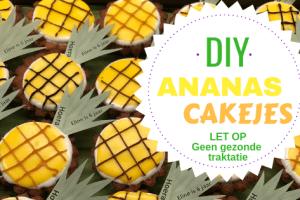 DIY Ananas cakejes