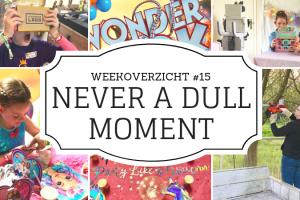 Weekoverzicht | Never a dull moment week 15