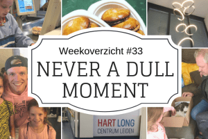 Weekoverzicht | Never a dull moment week 33 - Rollercoaster week