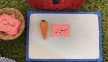 arabic jazar carrot