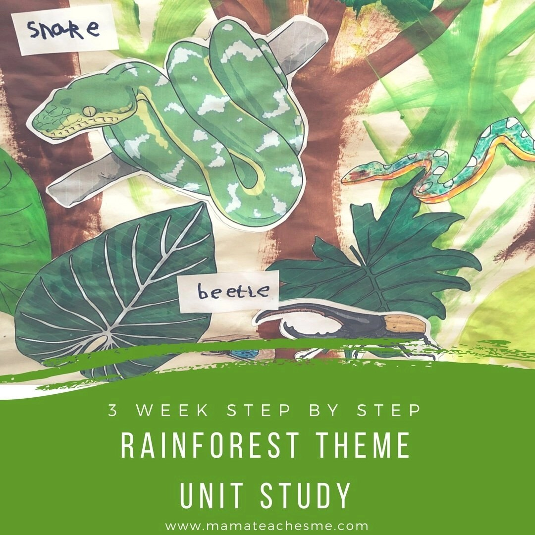 rainforest theme, unit study, homeschool, preschool