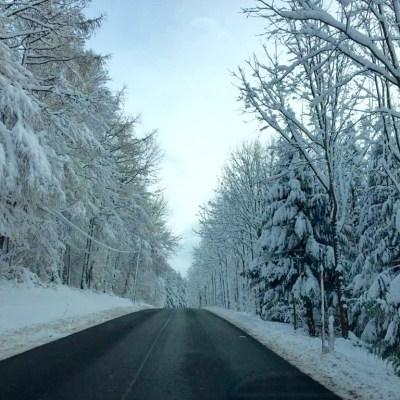 #WIB: Schneeballschlacht, Wintermärchen und Weihnachtsmarkt