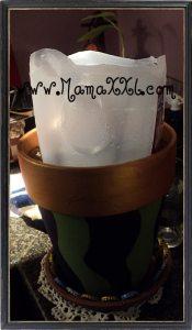 Uso inteligente del Agua en nuestro jardín (Blog Action Day 2010; Agua)