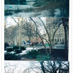 Wordless Wednesday: I love the Central Park .