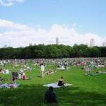5 lugares que todo niño debería experimentar durante el verano