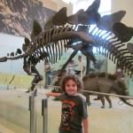 Un paseo para motivar y recordar al museo de Ciencias Naturales en NYC