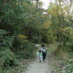 Descubrir el bosque y la naturaleza con los niños