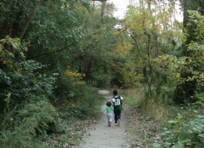 sari gabi bosque