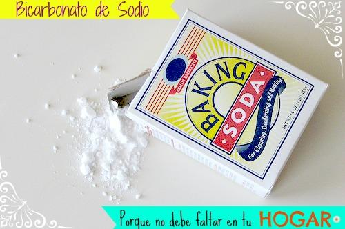 Bicarbonato de Sodio: Porque no debe faltar en tu hogar.