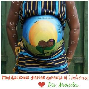 Meditaciones diarias durante el Embarazo: Miércoles