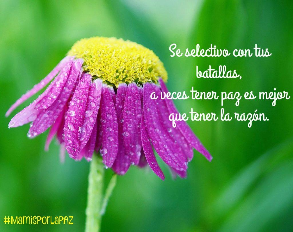Se selectivo con tus batallas, a veces tener paz es mejor que tener la razón. #MamisPorLaPAZ