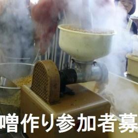 マメジンは味噌作りの参加者を10名募集します(2015年2月)