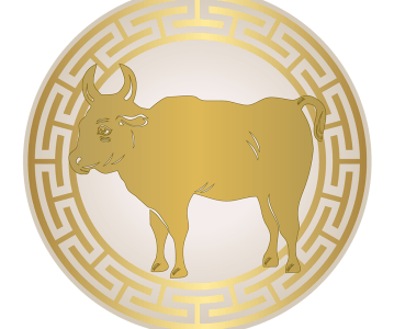 Astrological forecasts for the Ox in 2017
