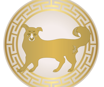 Astrological forecasts for the Dog in 2017