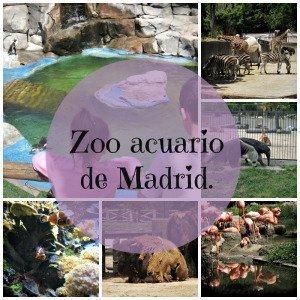 Zoo acuario de Madrid.