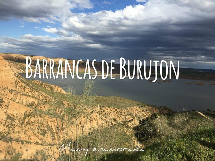 Barrancas de Burujón -Toledo-