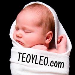 Banner teoyleo