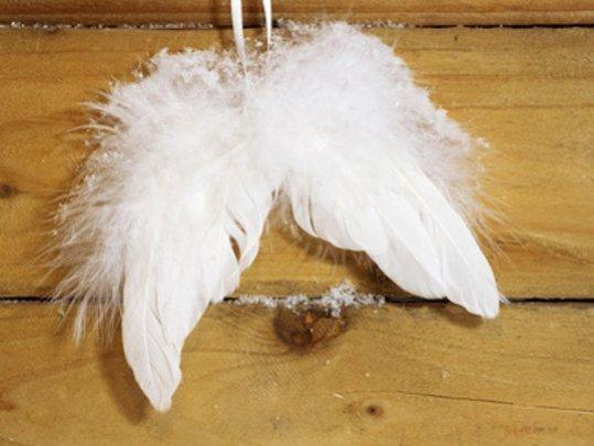 sternenkinder-engelsfluegel