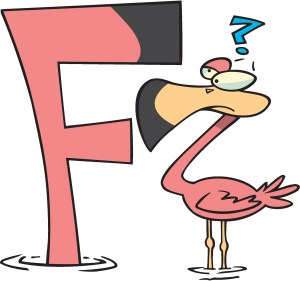 The Flamingo and the Ftoo