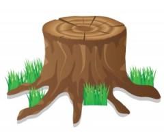 tree hacked