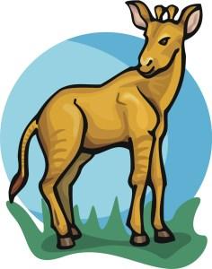 Blandine Okapi