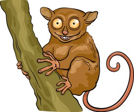Thane Tarsier